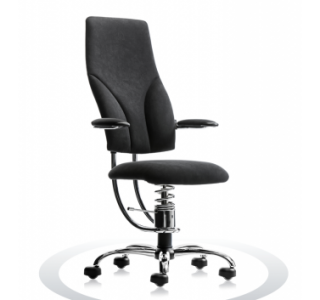 Ergonomische bureaustoel Spinalis Navigator Chrome zwart