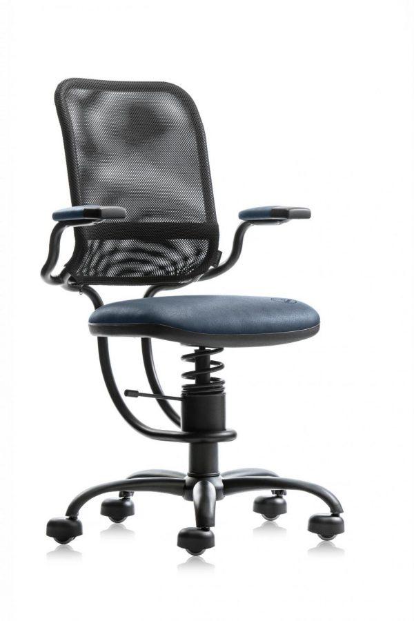 Spinalis Egonomic Blauw R500